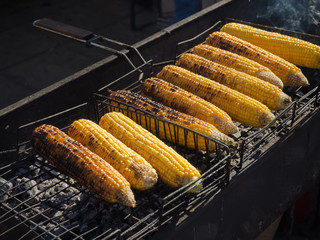 Cooking juicy corn on the grill.