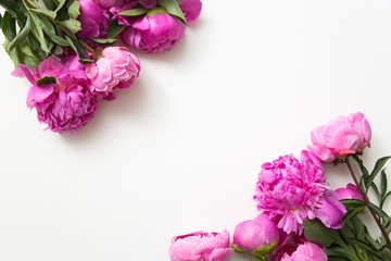 Close up of pink peonies over white background