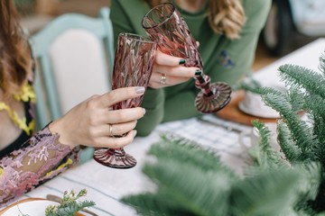 Women toasting glasses during Christmas dinner party