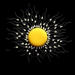 Close up of fertilization of egg and sperms against black background