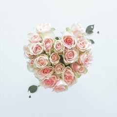 Heart shape of roses bouquet against white background