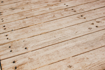 texture of the painted shabby wooden flooring made of boards, grunge background