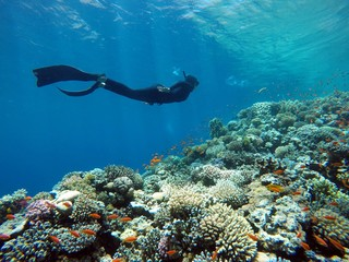 Female freediver exploring beautiful underwater world in Blue Hole