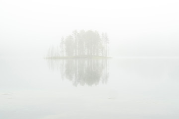 Trees  being reflected on a body water through the foggy air