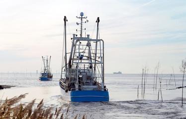 Flotte der Krabbenkutter läuft aus zum Krabbenfang an der Nordseeküste, Wremen bei Bremerhaven in Norddeutschland