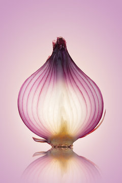 Red Onion Translucent layers