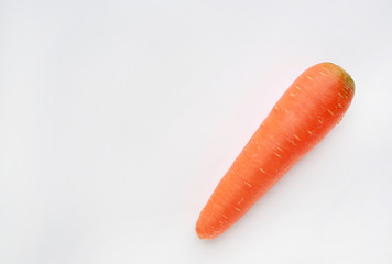 Carrot over white background with copy space.
