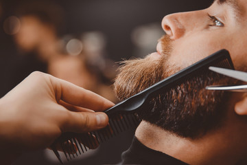 Hipster man sitting in armchair barber shop while hairdresser shaves beard with scissors.