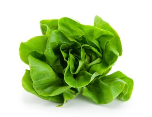 Fresh salad lettuce (also known as butterhead, Boston, Bibb, Buttercrunch, and Tom Thumb, Arctic King) isolated on white Front view