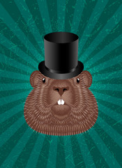 Groundhog Day. Concept National holiday in USA and Canada. Groundhog Head in Top Hat. Green background with center rays, grunge texture.