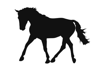A silhouette of a freely trotting horse.