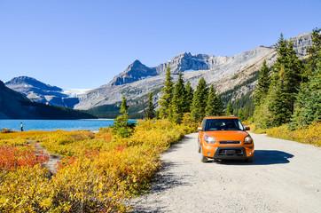Fototapeta 秋のカナディアンロッキー 紅葉のボウ・レイク湖畔(バンフ国立公園 カナダ・アルバータ州) obraz