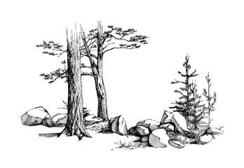 Sketch of tree