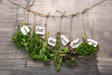 Bunches of different fresh herbs on grey background