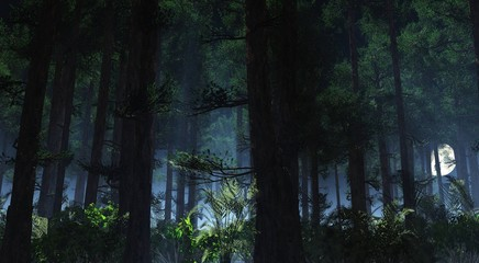 Night forest in the fog, forest in the haze at night,
