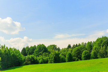 Beautiful landscape. Big forest, blue sky with clouds, green field