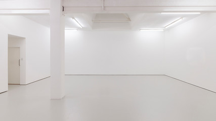 A view of a white painted interior of an empty room or an art gallery with a skylight lighting and concrete floors Wall mural