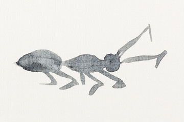 sketch of ant drawn by black watercolors