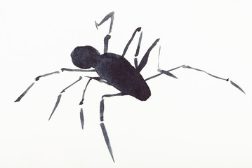 spider drawn by black watercolors
