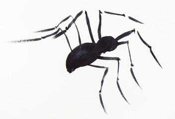 one spider drawn by black watercolors