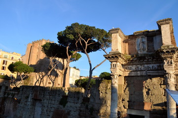 Roma in Italy