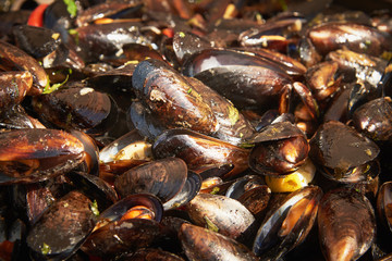 Boiled mussels with herbs and sweet pepper