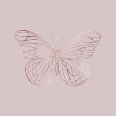 Buttefly. Rose gold texture. Elegant illustration