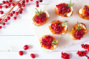 Spoed Fotobehang Voorgerecht Holiday crostini appetizers with cranberries, brie and caramelized onions. Top view on a white wood background.