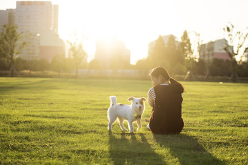 Dog and hostess, park background