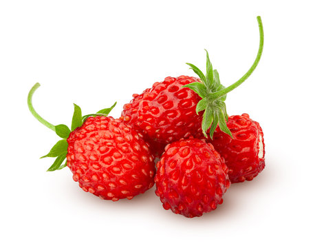 Wild strawberry isolated on white background, clipping path, full depth of field