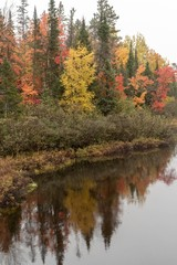 Vibrant Autumn Colors Reflecting on the Wisconsin River in Land O'Lakes Wisconsin
