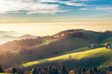 Scenic autumn mountain landscape of Black Forest, Germany. Colorful travel background.