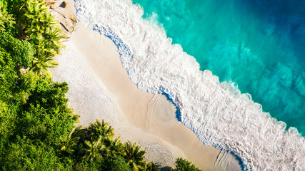 Tropical beach with sea and palm taken from drone. Seychelles famous shark beach - aerial photo - fototapety na wymiar