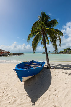 Wooden boat under a palm tree on the on tropical  beach - the caribbean island of Guadeloupe