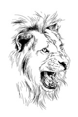 lion drawn with ink from the hands of a predator tattoo logo