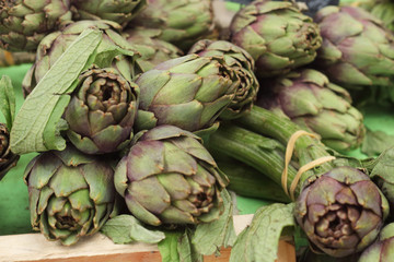 Big green artichokes
