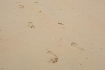 Foot prints closeup