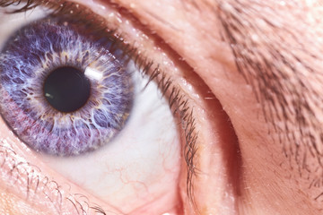 macro photo, human eye, with Rainbow eye shell, and black pupil.