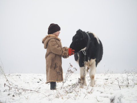 A little girl and a cow. Winter, snow