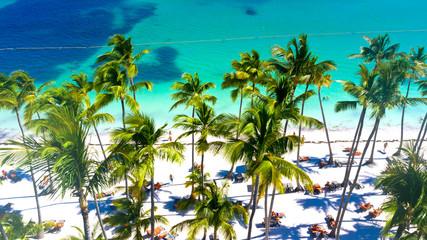 Luftbild vom wunderschönen tropischen Sandstrand mit Palmen in Punta Cana, Dominikanische Republik