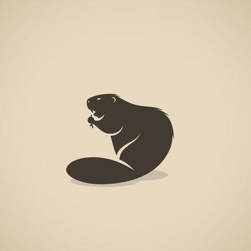 Beaver animal