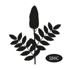 Sumac. Plant. Inflorescence, leaves. Black silhouette on white background.