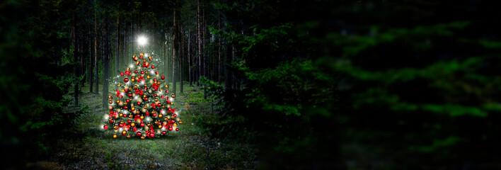 Wall Mural - Weihnachtsbaum im Wald,