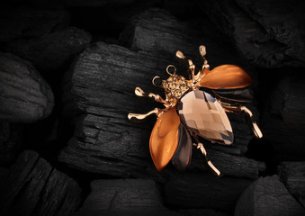 Jewelery bug brooch with gemstone on black coal background, copy space