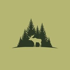 Лось на фоне хвойного леса
