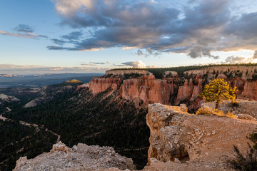 Wall Mural - Bryce Canyon National Park at Sunset from Paria Point