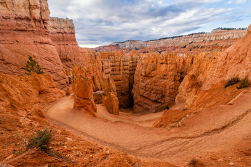 Wall Mural - Wall Street of Bryce Canyon National Park