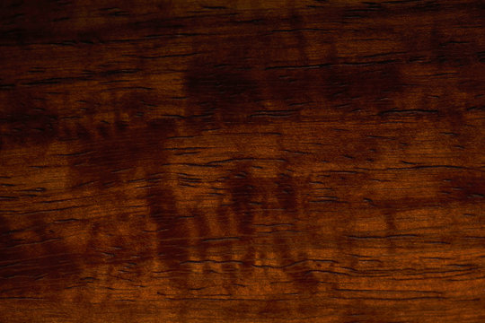 Redwood Wood (sequoia sempervirens) Surface Finish Texture Close-up