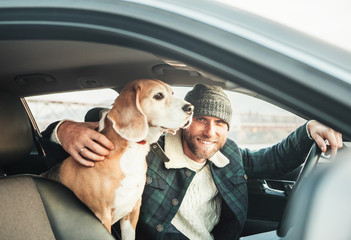 Man traveling with his beagle dog by auto