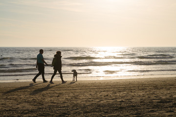 couple walking the dog at the beach with low sun in the background
